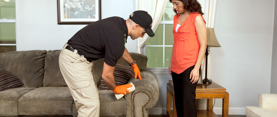 Mentor, OH carpet upholstery cleaning