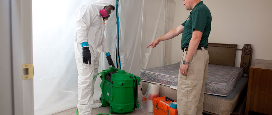 Mentor, OH mold removal process